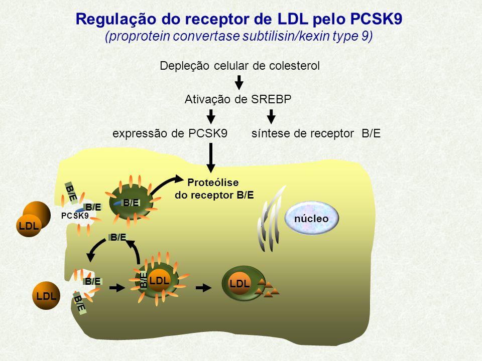 Regulação do receptor de LDL pelo PCSK9