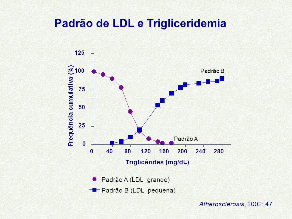 Padrão de LDL e Trigliceridemia