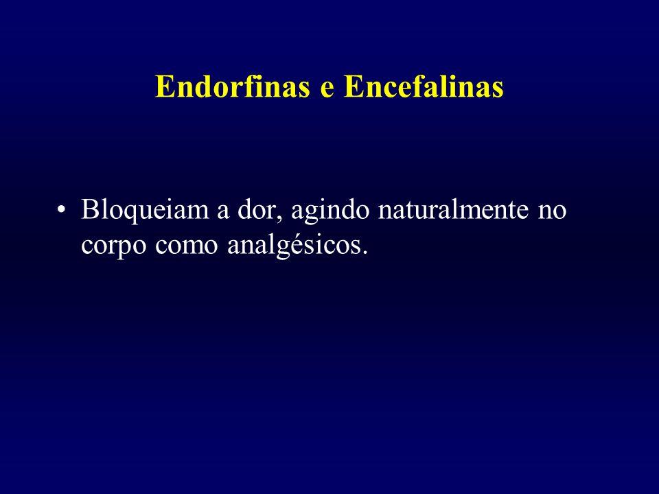 Endorfinas e Encefalinas