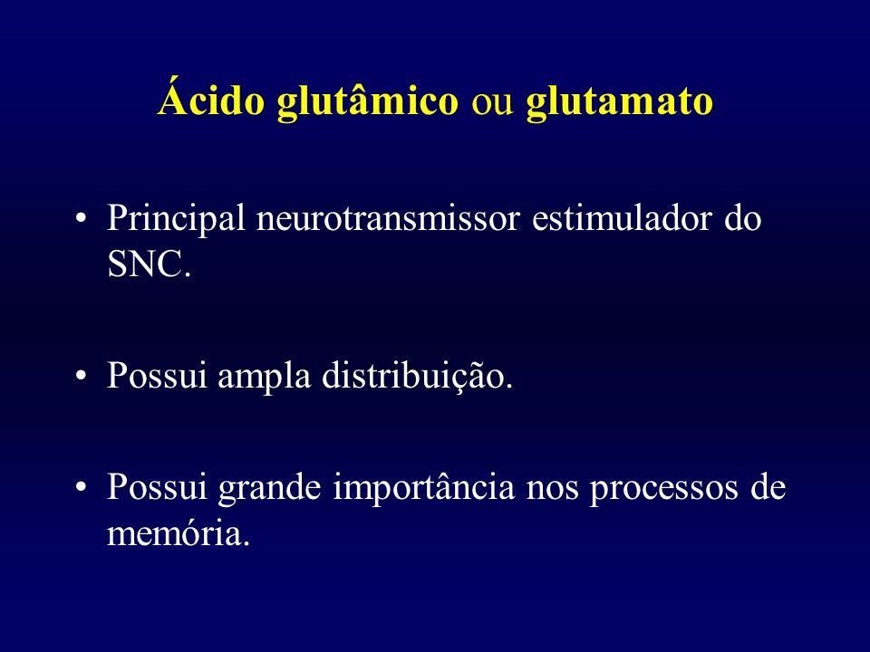 Ácido glutâmico ou glutamato