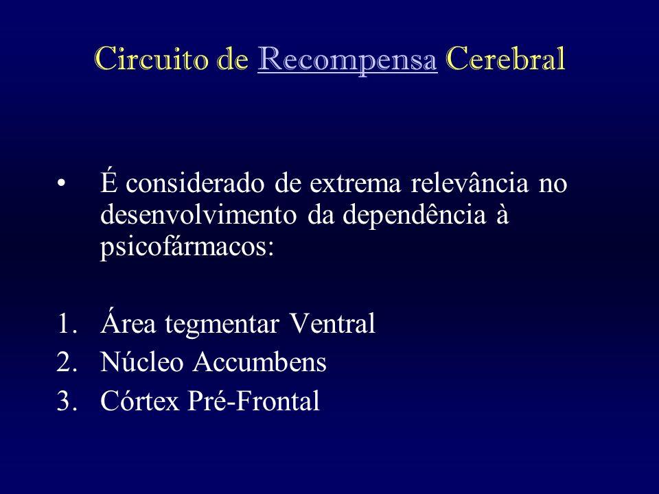 Circuito de Recompensa Cerebral