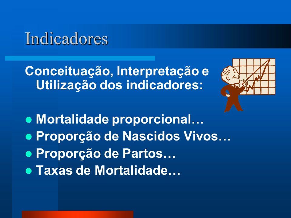 Indicadores Conceituação, Interpretação e Utilização dos indicadores: