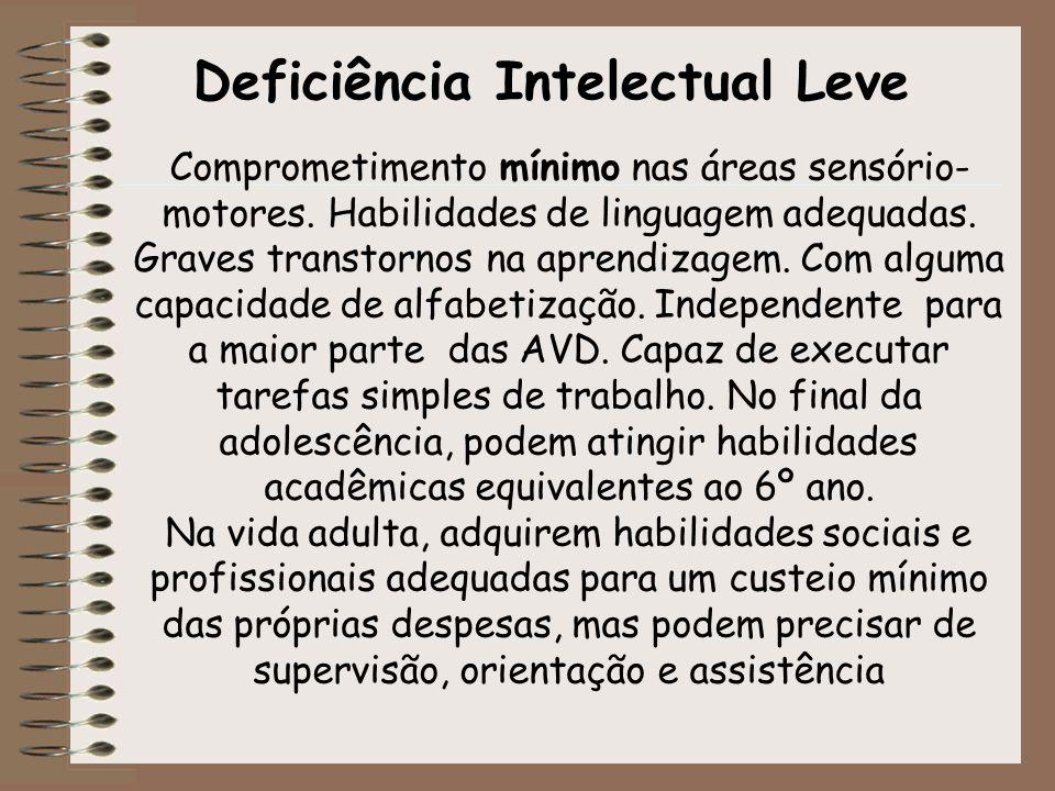 Deficiência Intelectual Leve