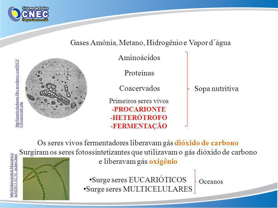 Gases Amônia, Metano, Hidrogênio e Vapor d´água
