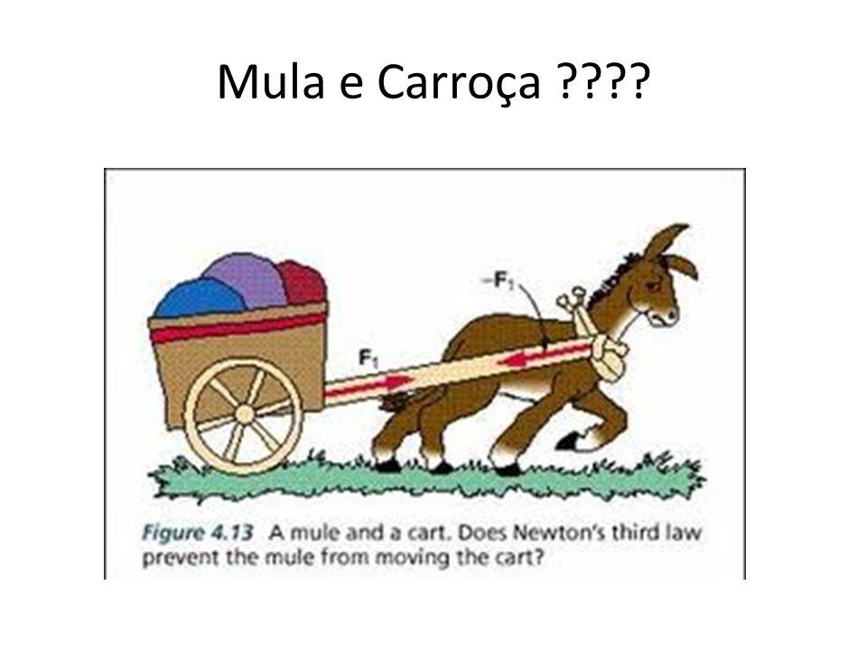 Mula e Carroça