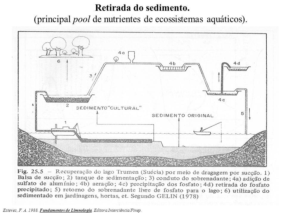 (principal pool de nutrientes de ecossistemas aquáticos).