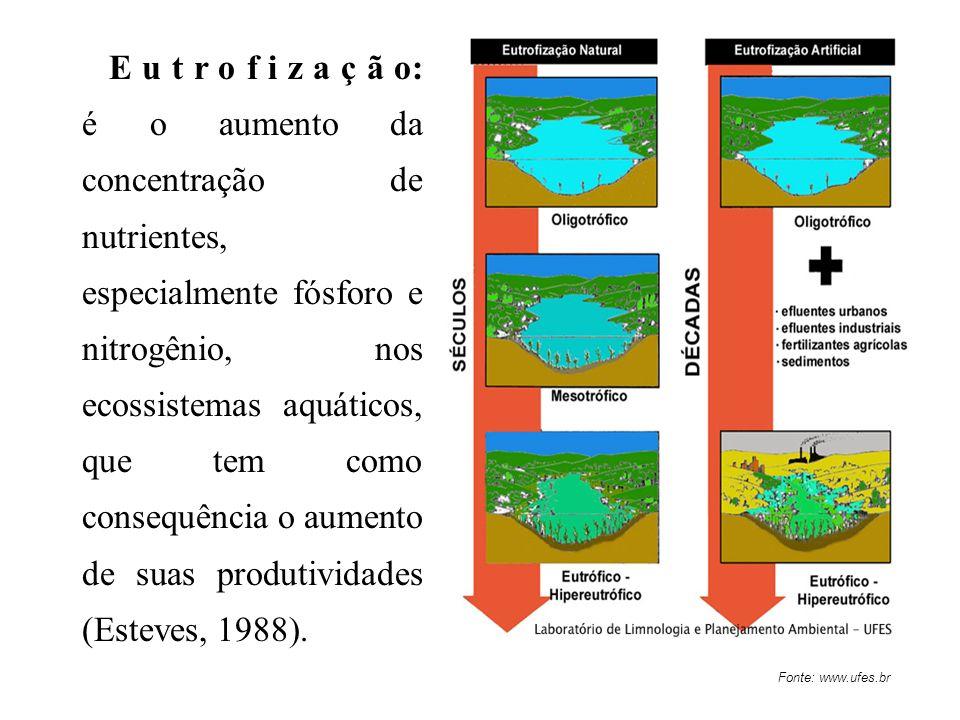 E u t r o f i z a ç ã o: é o aumento da concentração de nutrientes, especialmente fósforo e nitrogênio, nos ecossistemas aquáticos, que tem como consequência o aumento de suas produtividades (Esteves, 1988).