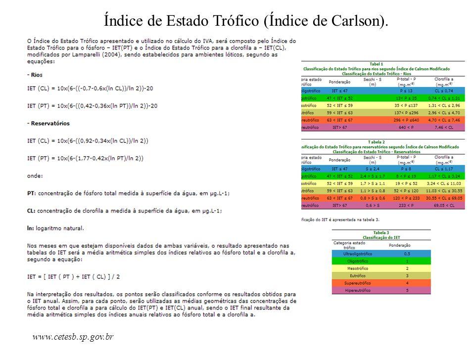 Índice de Estado Trófico (Índice de Carlson).