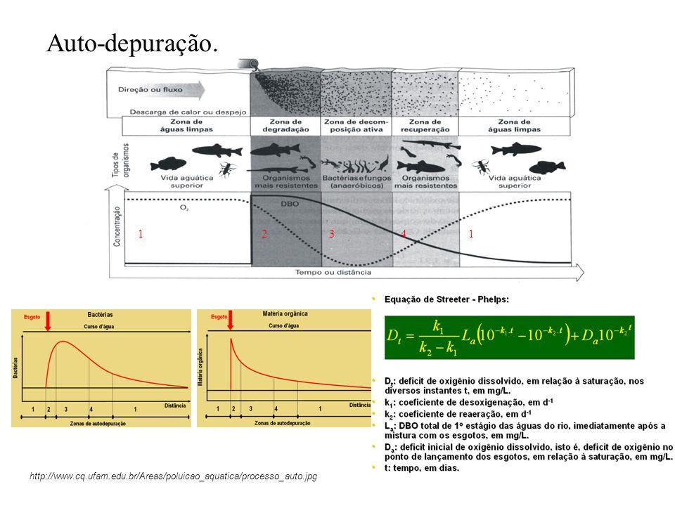 Auto-depuração. 1 2 3 4 http://www.cq.ufam.edu.br/Areas/poluicao_aquatica/processo_auto.jpg