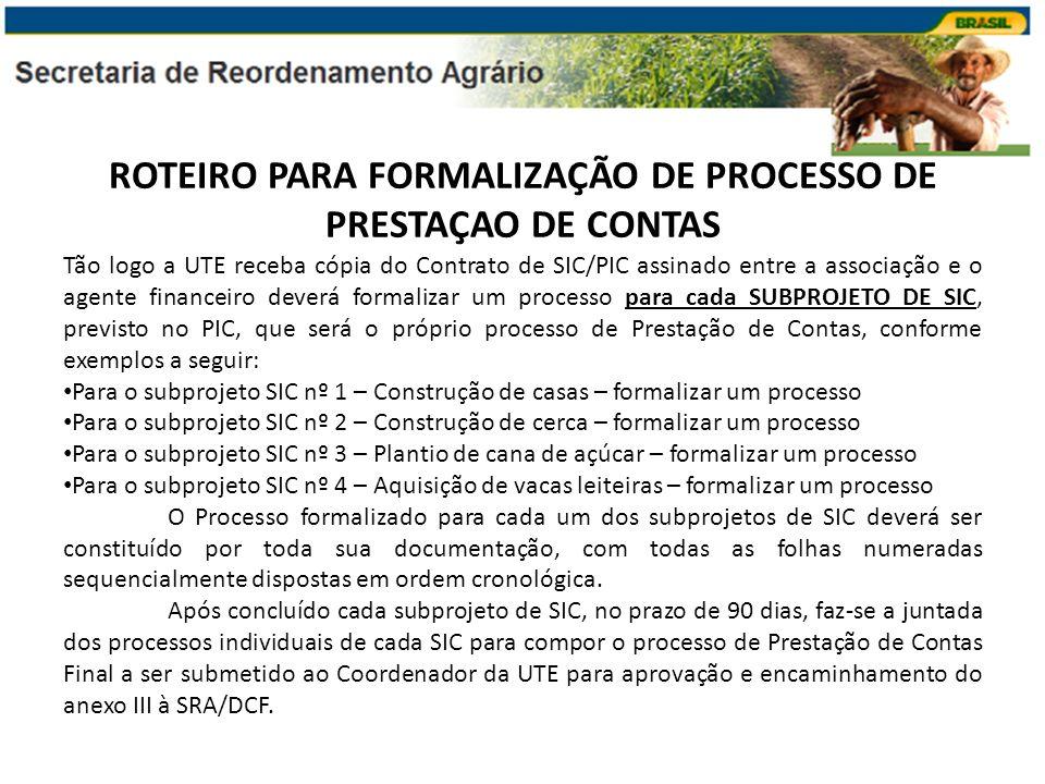 ROTEIRO PARA FORMALIZAÇÃO DE PROCESSO DE PRESTAÇAO DE CONTAS