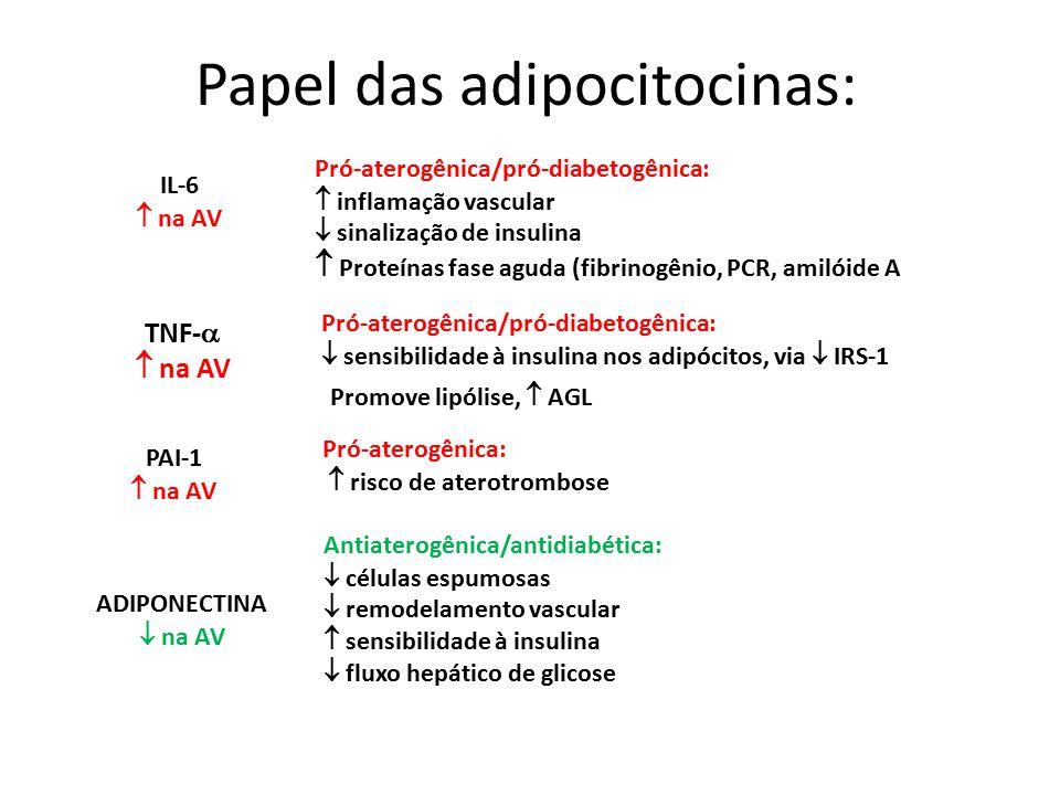 Papel das adipocitocinas: