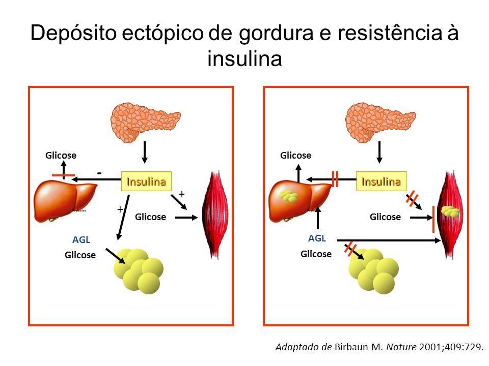 Depósito ectópico de gordura e resistência à insulina