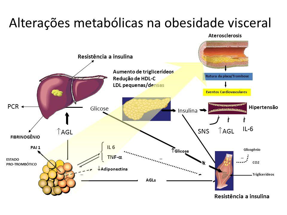 Alterações metabólicas na obesidade visceral