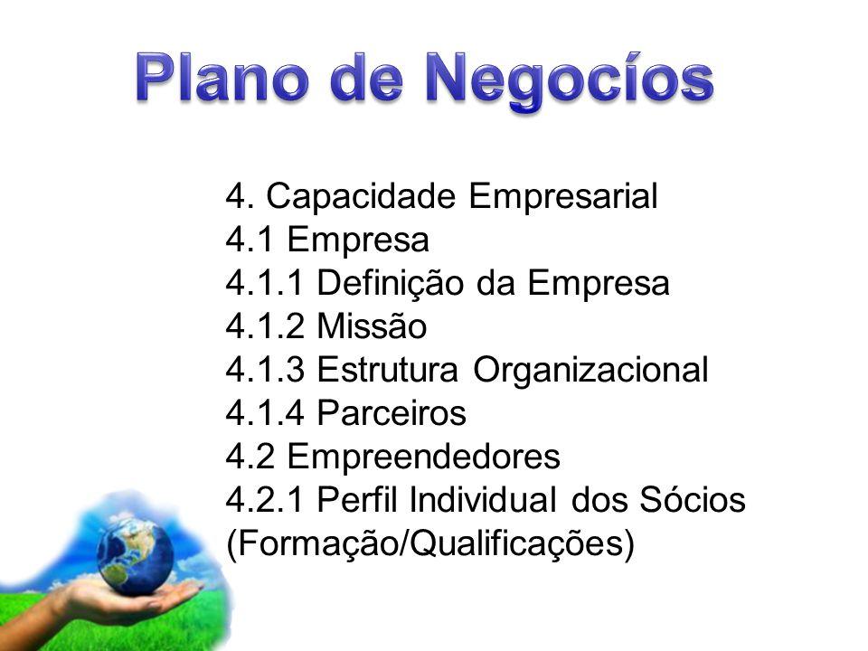 Plano de Negocíos 4. Capacidade Empresarial 4.1 Empresa