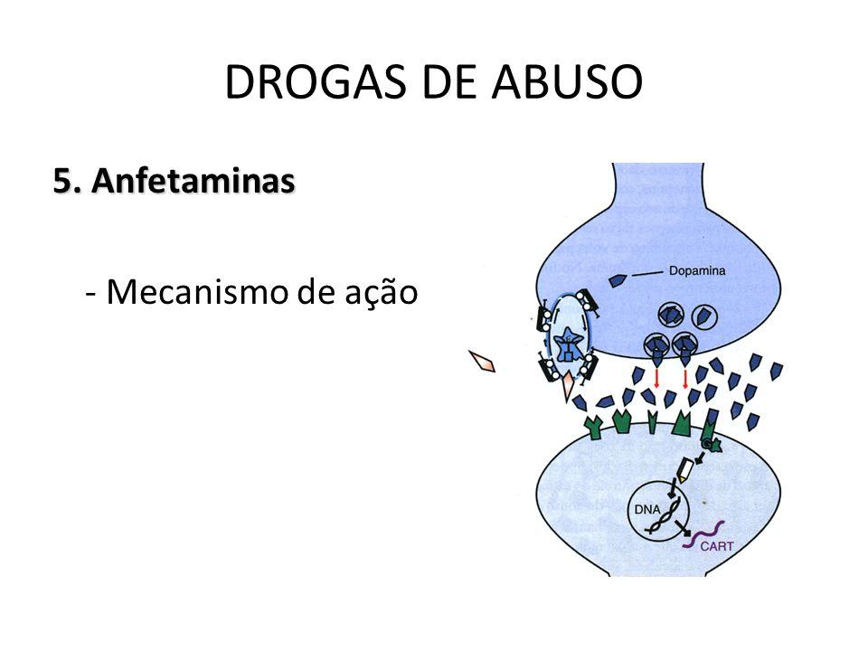 DROGAS DE ABUSO 5. Anfetaminas - Mecanismo de ação