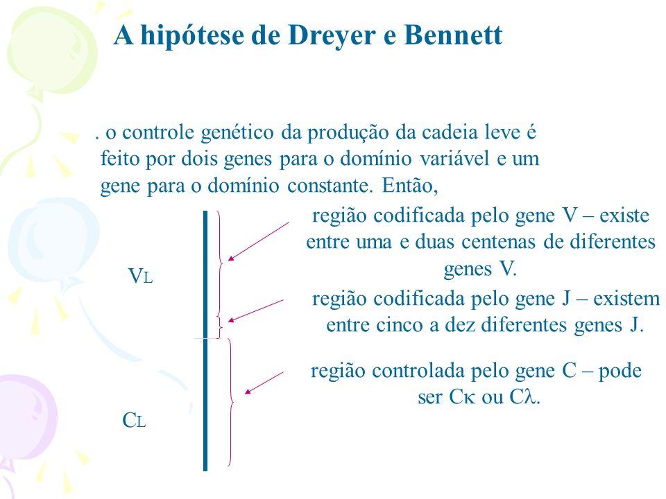 A hipótese de Dreyer e Bennett