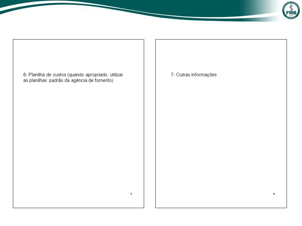 6- Planilha de custos (quando apropriado, utilizar as planilhas padrão da agência de fomento)