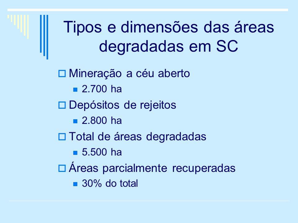 Tipos e dimensões das áreas degradadas em SC