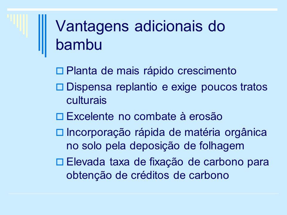 Vantagens adicionais do bambu