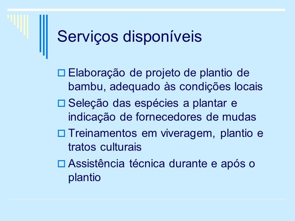 Serviços disponíveis Elaboração de projeto de plantio de bambu, adequado às condições locais.