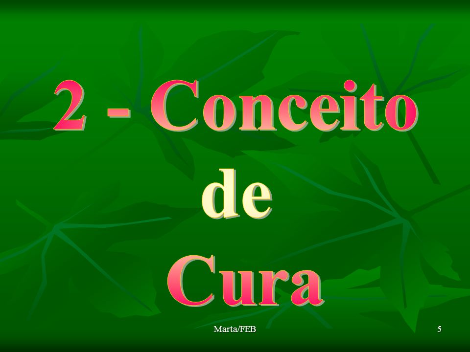 2 - Conceito de Cura Marta/FEB