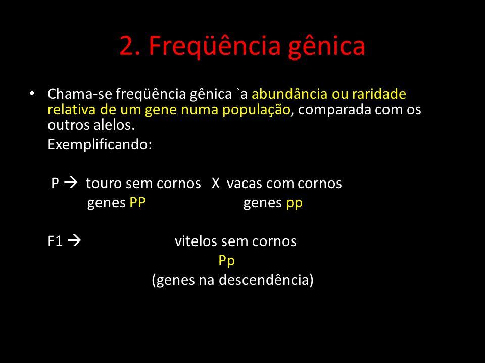 2. Freqüência gênica Chama-se freqüência gênica `a abundância ou raridade relativa de um gene numa população, comparada com os outros alelos.