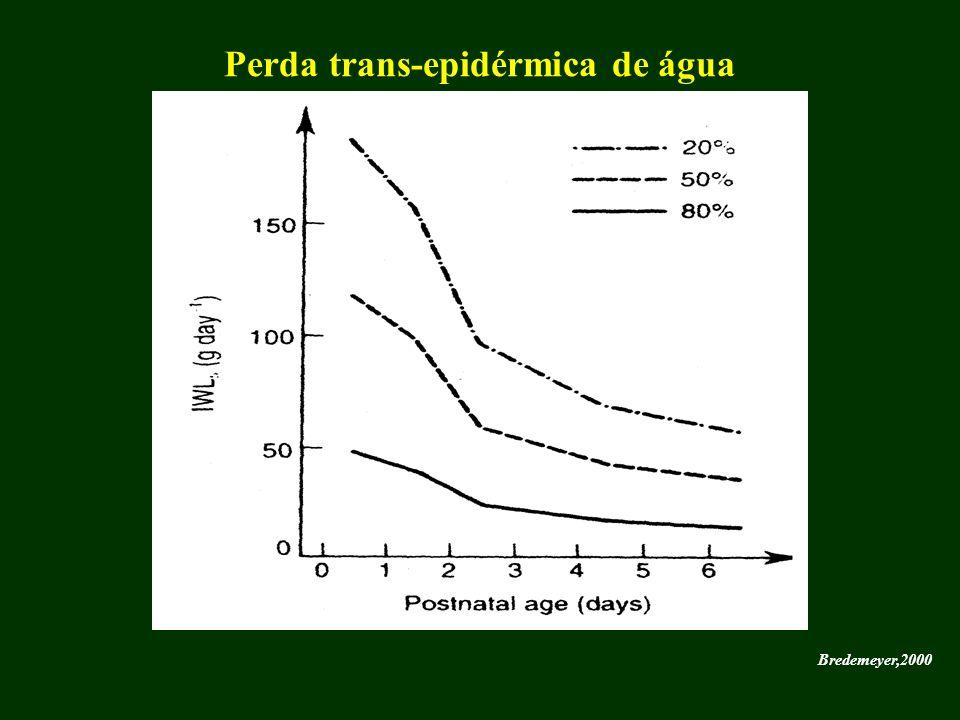Perda trans-epidérmica de água
