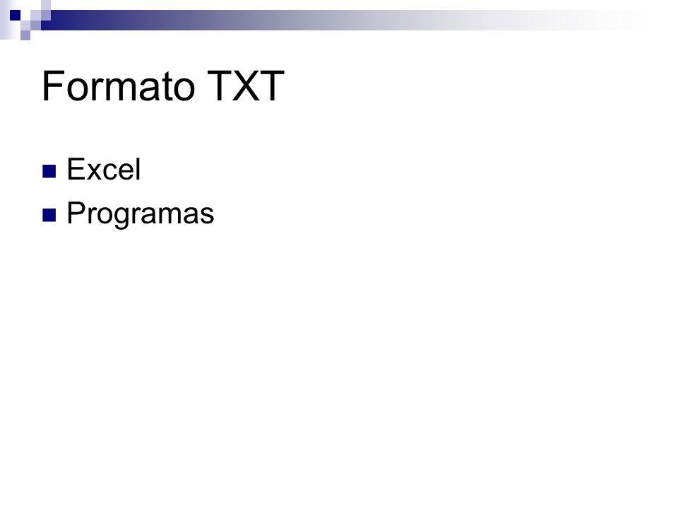 Formato TXT Excel Programas