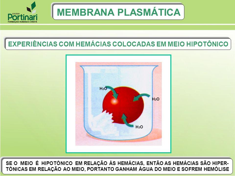 EXPERIÊNCIAS COM HEMÁCIAS COLOCADAS EM MEIO HIPOTÔNICO