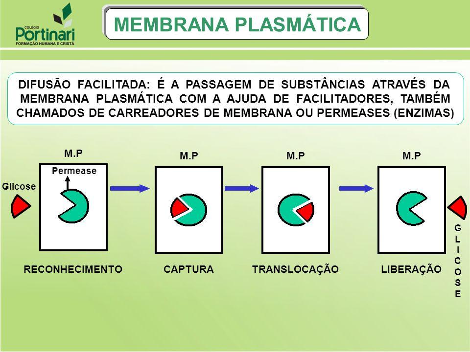 MEMBRANA PLASMÁTICA DIFUSÃO FACILITADA: É A PASSAGEM DE SUBSTÂNCIAS ATRAVÉS DA.