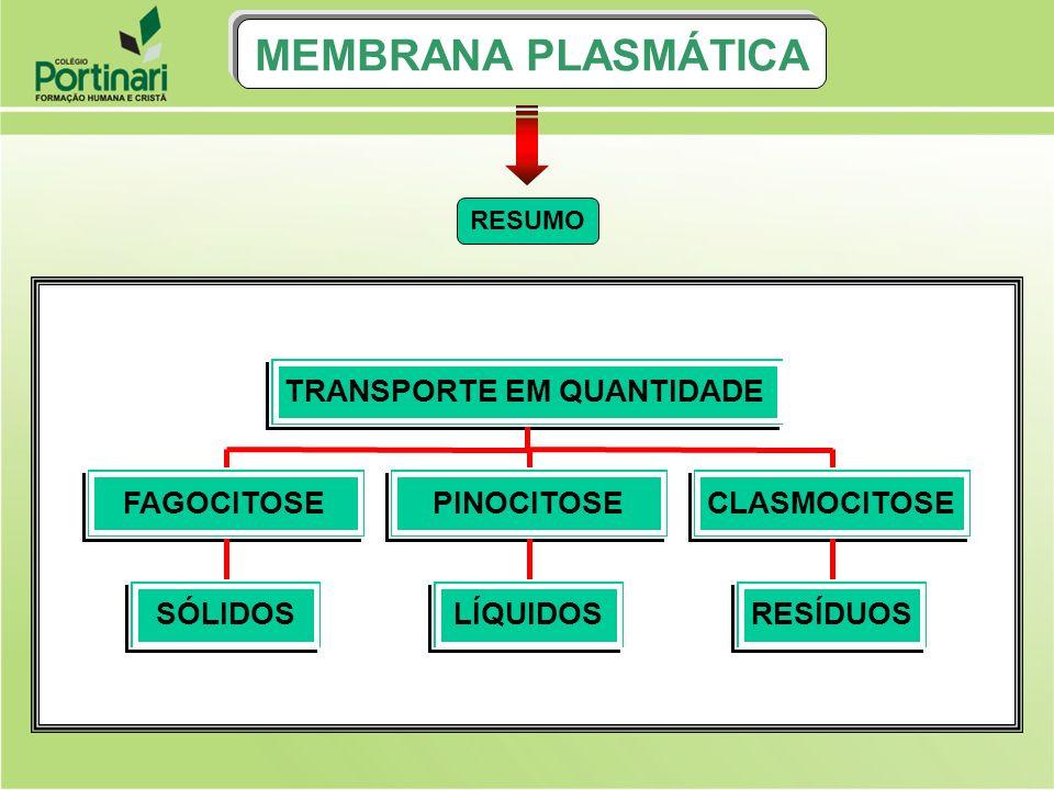 MEMBRANA PLASMÁTICA SÓLIDOS FAGOCITOSE LÍQUIDOS PINOCITOSE RESÍDUOS