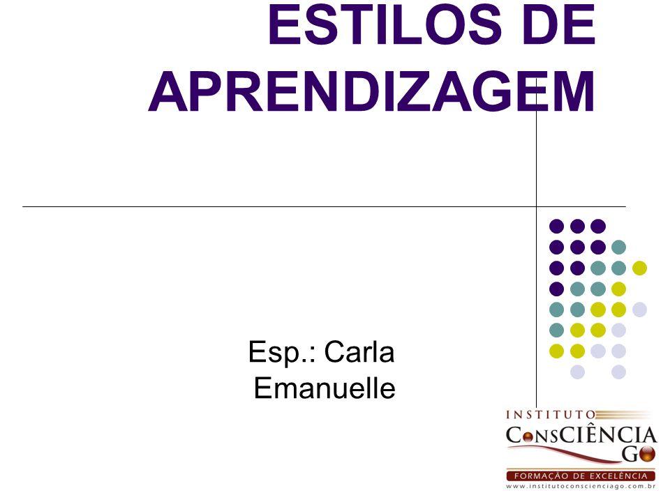 ESTILOS DE APRENDIZAGEM