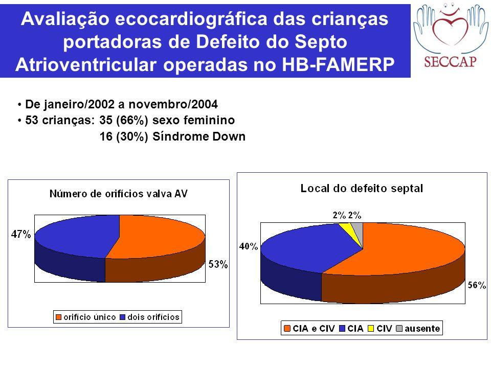 Avaliação ecocardiográfica das crianças portadoras de Defeito do Septo Atrioventricular operadas no HB-FAMERP