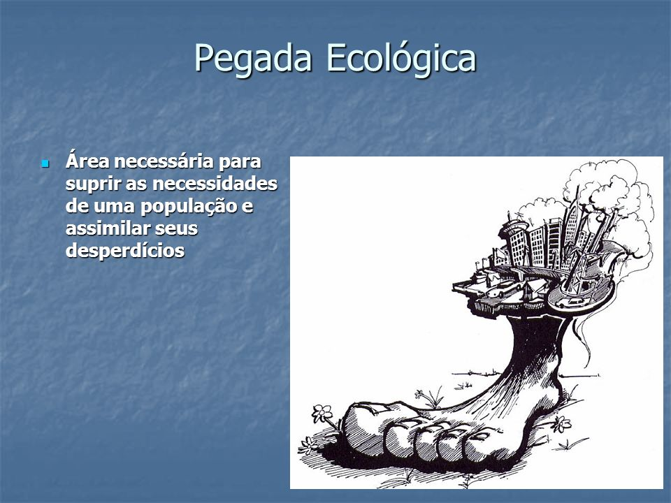 Pegada Ecológica Área necessária para suprir as necessidades de uma população e assimilar seus desperdícios.