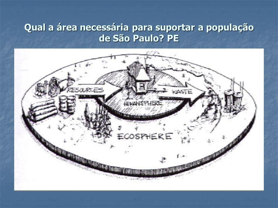Qual a área necessária para suportar a população de São Paulo PE