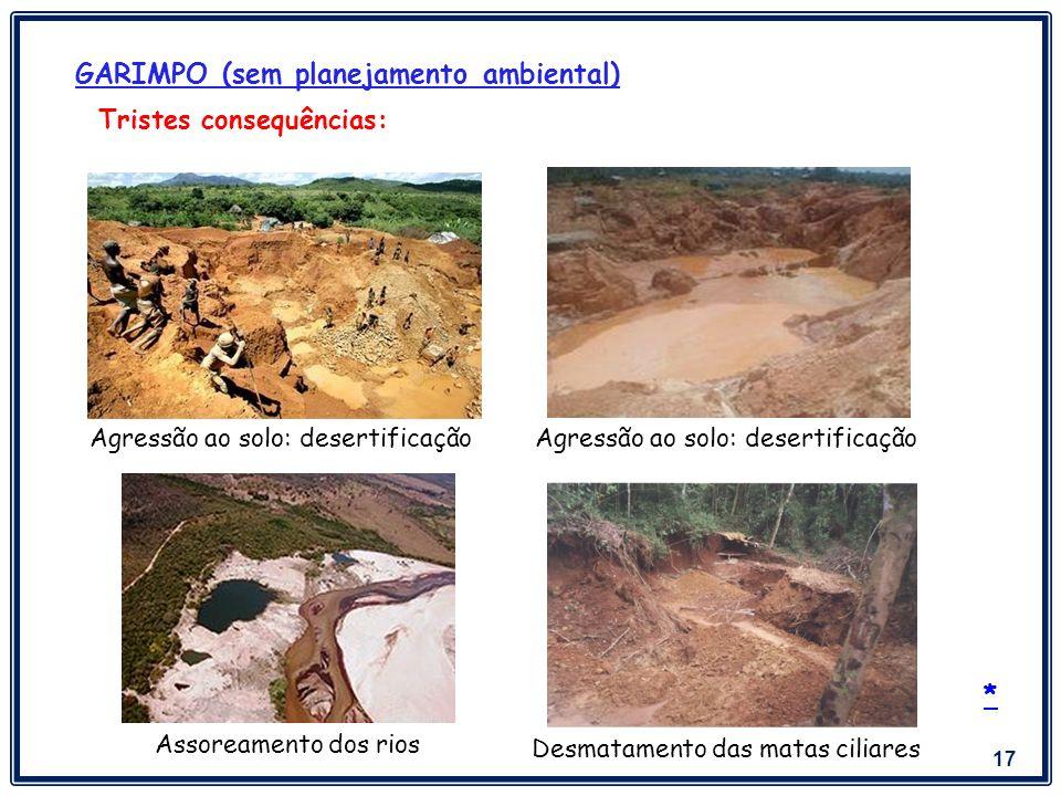 GARIMPO (sem planejamento ambiental)