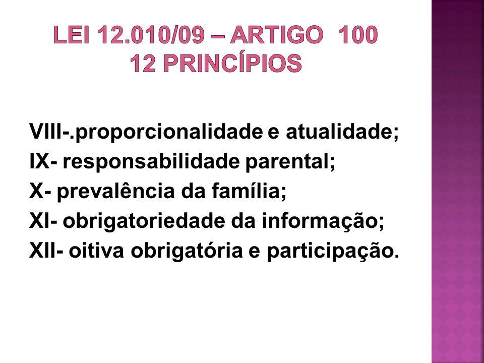 LEI 12.010/09 – ARTIGO 100 12 princípios