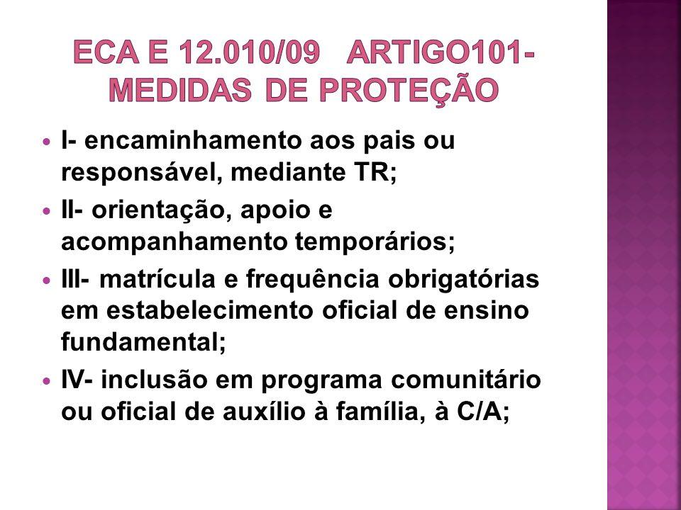 ECA e 12.010/09 ARTigo101-MEDIDAS DE PROTEÇÃO