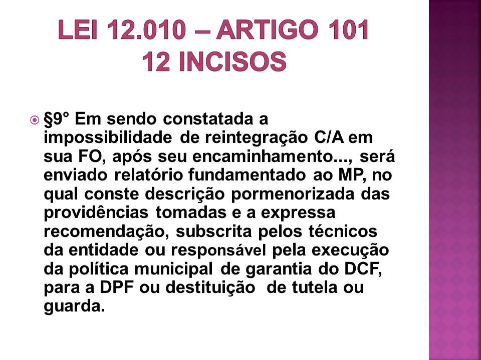 LEI 12.010 – artigo 101 12 incisos