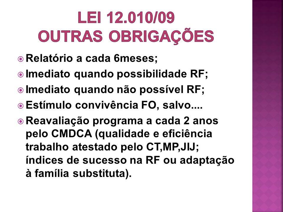 LEI 12.010/09 OUTRAS OBRIGAÇÕES