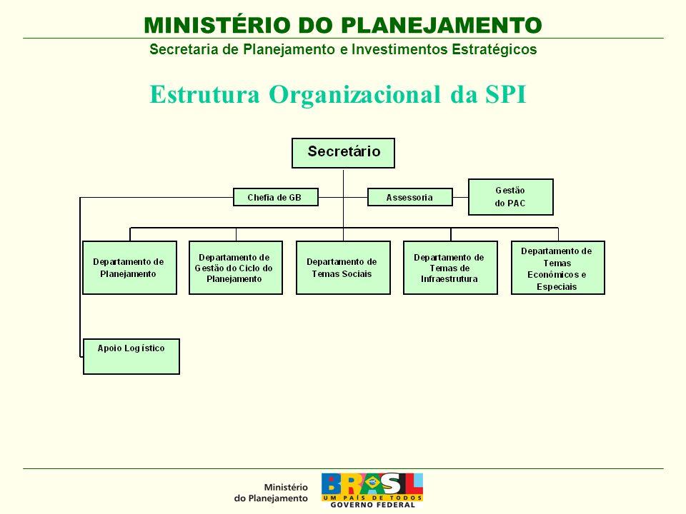 Estrutura Organizacional da SPI