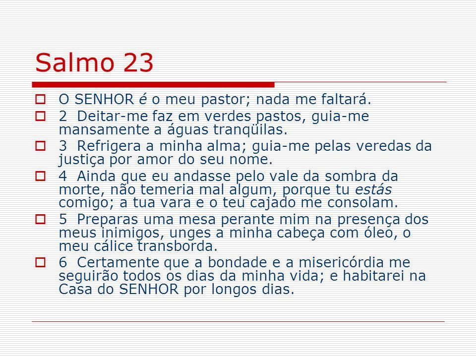 Salmo 23 O SENHOR é o meu pastor; nada me faltará.