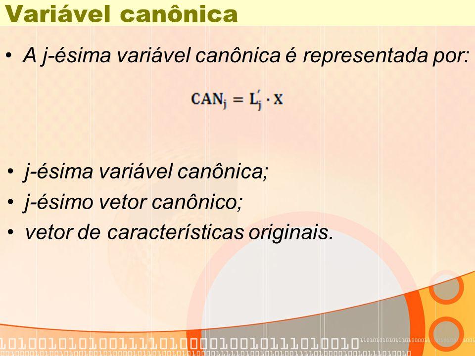 Variável canônica A j-ésima variável canônica é representada por: