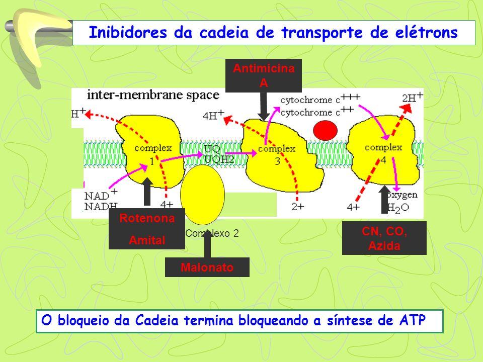Inibidores da cadeia de transporte de elétrons