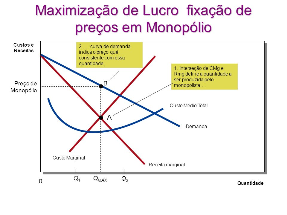 Maximização de Lucro fixação de preços em Monopólio