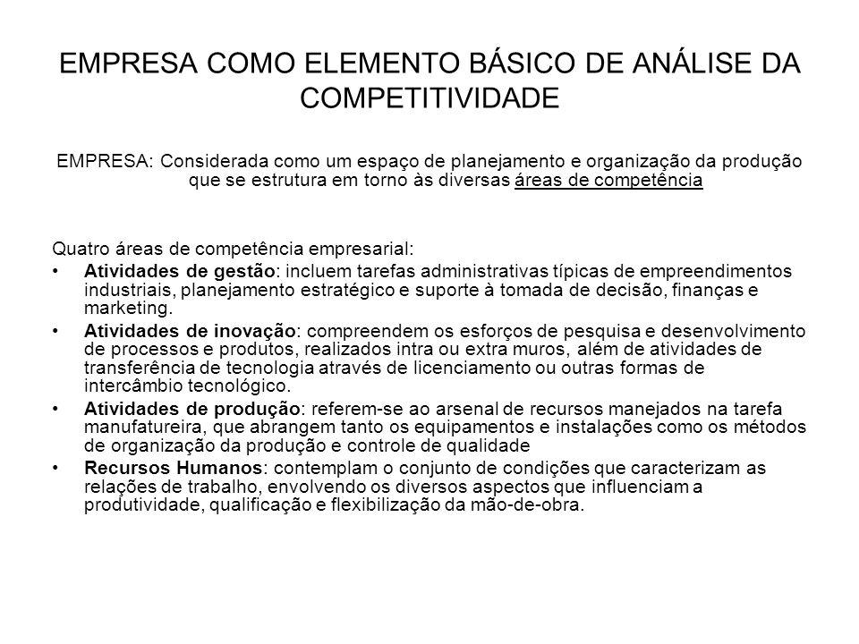 EMPRESA COMO ELEMENTO BÁSICO DE ANÁLISE DA COMPETITIVIDADE