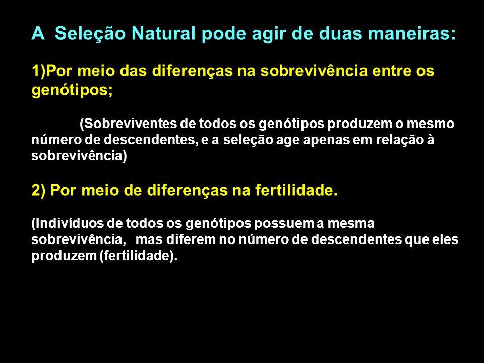 A Seleção Natural pode agir de duas maneiras:
