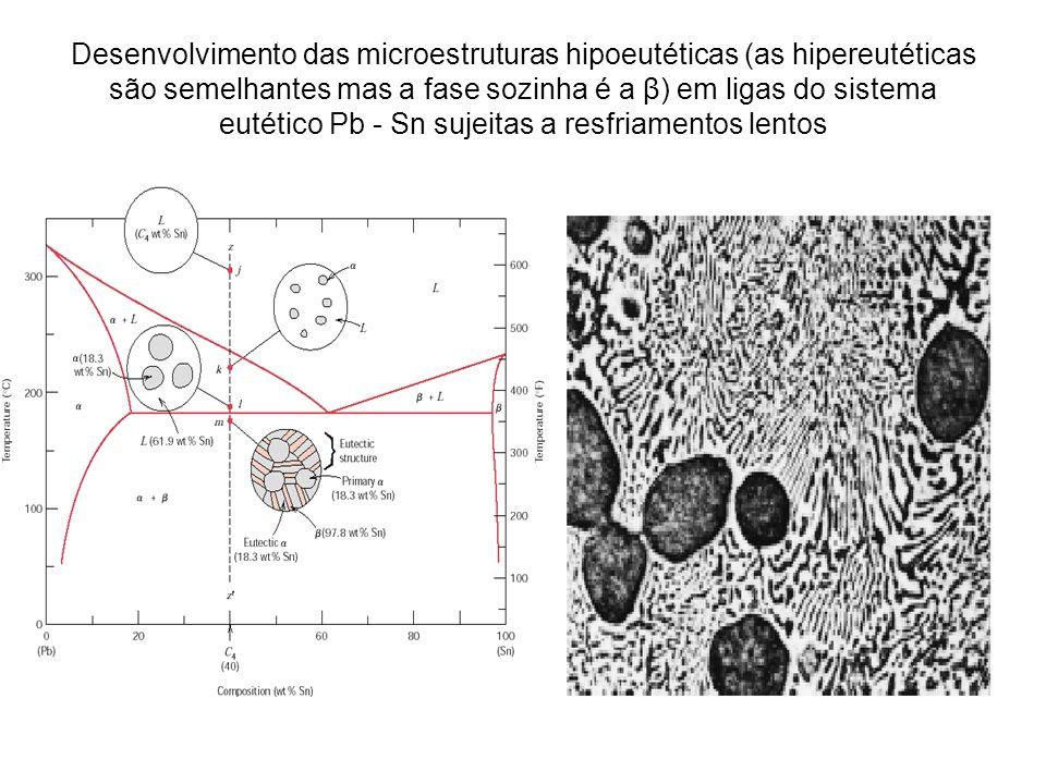 Desenvolvimento das microestruturas hipoeutéticas (as hipereutéticas são semelhantes mas a fase sozinha é a β) em ligas do sistema eutético Pb - Sn sujeitas a resfriamentos lentos