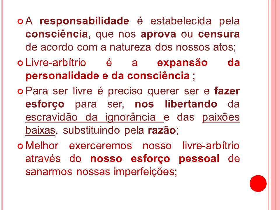 A responsabilidade é estabelecida pela consciência, que nos aprova ou censura de acordo com a natureza dos nossos atos;