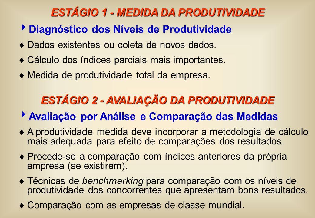 ESTÁGIO 1 - MEDIDA DA PRODUTIVIDADE